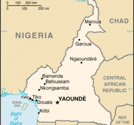 Cameroon: 18 dead, 4 injured in terror attacks