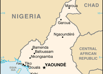 Cameroon: 18 dead, 4 injured in terror attacks