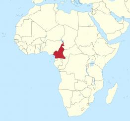 Cameroon train tragedy kills at least 55