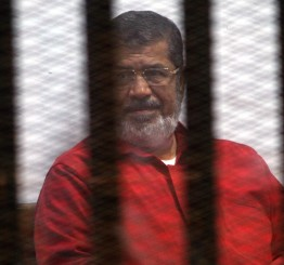 Egypt's Muslim Brotherhood unveils plan to heal rifts
