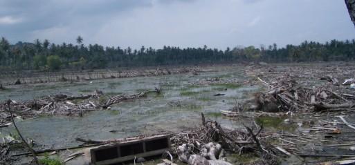 Indonesia: Death toll from quake, tsunami reaches 832, 17,000 left homeless