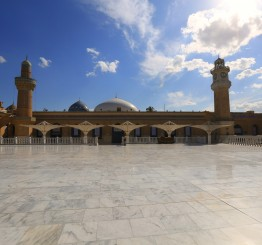 Coronavirus cases, deaths rise in Arab countries