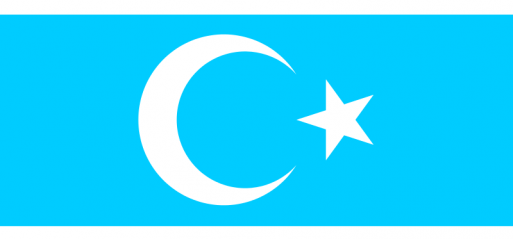 22 Turkmen being treated in Ankara after chemical attack in Iraq