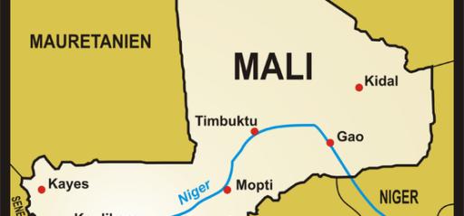 Mali woman gives rare birth to 9 babies