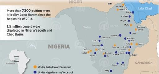 Nigeria: 17 killed in suicide attacks in Madagali