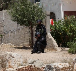 Palestine: Israeli army detains 15 Palestinians in West Bank