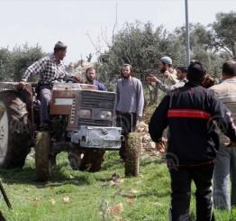 Palestine: Israeli settlers set fire to West Bank park