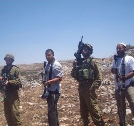 Palestine: Israeli settlers uproot vegetable crops in Bethlehem