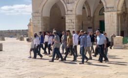 Palestine: Dozens of Israeli settlers storm Al-Aqsa Mosque complex