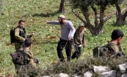 Palestine: Jewish settlers attack Palestinian school in West Bank