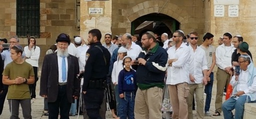 Palestine: 275 Israeli settlers storm Al-Aqsa Mosque courtyards