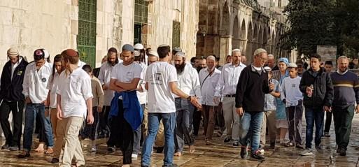 Palestine: Over 500 Israeli settlers storm Al-Aqsa Mosque compound in Jerusalem