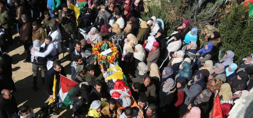 Palestine: 14 Palestinians killed since Trump recognised Jerusalem as Israel's capital