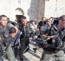 Palestine: Israeli army detains 15 Palestinians