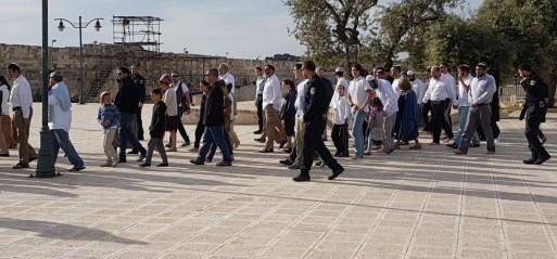 Palestine: Jewish settlers descend on East Jerusalem's Al-Aqsa Mosque for Passover