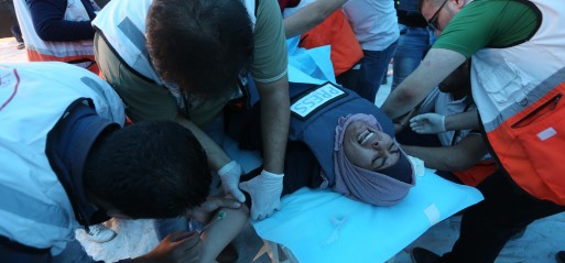 Palestine: 3 Palestinians killed, inc a minor, 376 injured by Israeli forces