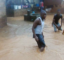 Sierra Leone: Hundreds dead in Freetown mudslide