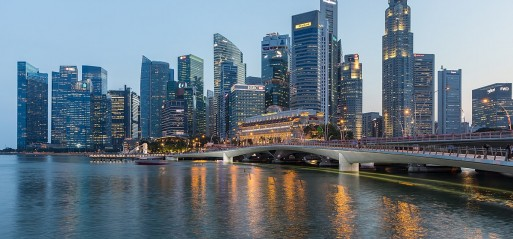 Christchurch-like terror attack thwarted in Singapore