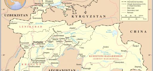 Tajikistan: Islamic Renaissance Party executives detained