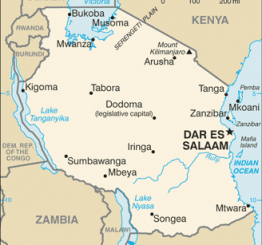 Tanzania: 20 dead as terrorists storm border region