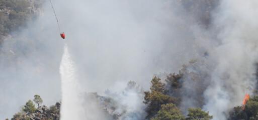 Turkey: 167 wildfires now under control