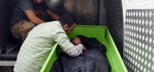Turkey: 17 dead as refugee boat sinks off Bodrum