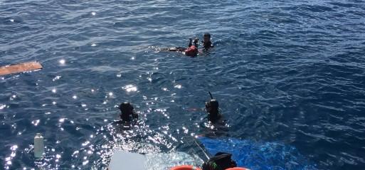 Turkey: Refugee boat sinks off Aegean coast, 25 dead