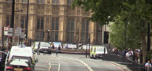 UK: Westminster car crash driver charged