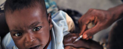 Malaria vaccine from Oxford Covid-19 team offers new hope