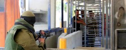 Israel labelled 'apartheid regime' by its own human rights organisation