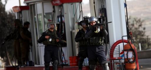 Palestine: 30 Palestinians killed, incl 7 children in Oct